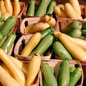 1072 - Garden Vegetable Pasta Salad